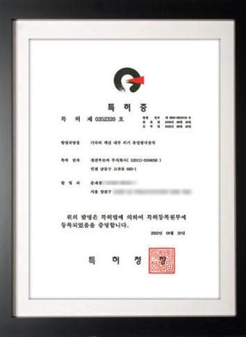 patent2000-33919