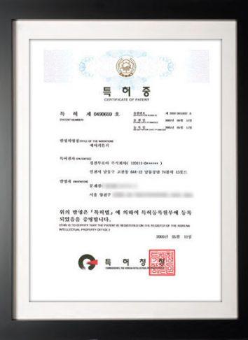 patent2002-55937