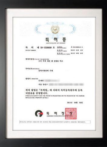 patent2010-2510